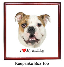 Bulldog Keepsake Box