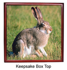 Rabbit Keepsake Box