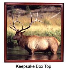 Elk Keepsake Box