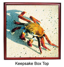 Crab Keepsake Box