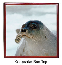 Seal Keepsake Box