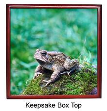 Toad Keepsake Box
