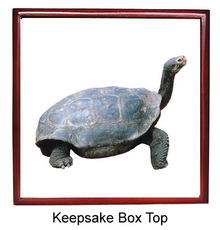 Turtle Keepsake Box