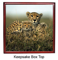 Cheetah Keepsake Box