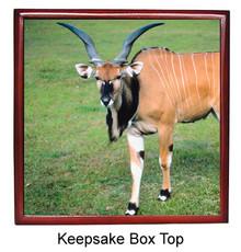 Eland Keepsake Box