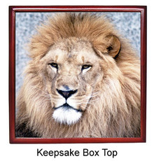 Lion Keepsake Box