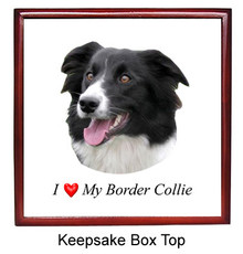 Border Collie Keepsake Box