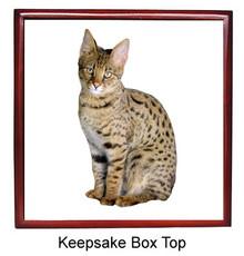 Savannah Keepsake Box