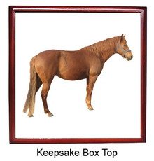 Barb Keepsake Box
