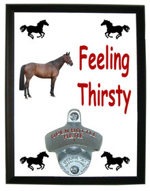 Oldenburg Feeling Thirsty Bottle Opener Plaque