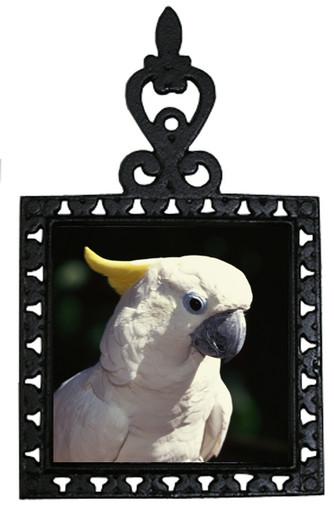 Cockatoo Iron Trivet