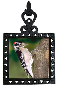 Downey Woodpecker Iron Trivet