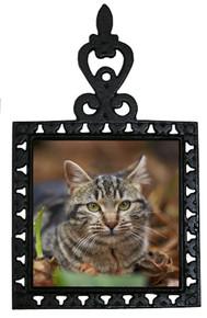 Tabby Cat Iron Trivet