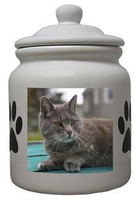 Cat Ceramic Color Cookie Jar