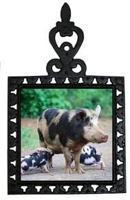Pig Iron Trivet