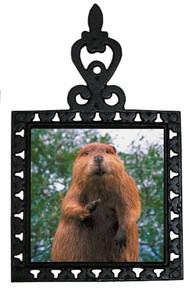 Beaver Iron Trivet