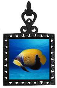 Blue Girdled Angelfish Iron Trivet