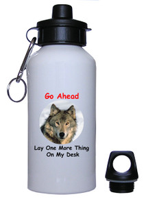 Lay One More Thing On My Desk: Water Bottle