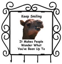 Keep Smiling: Metal Key Holder