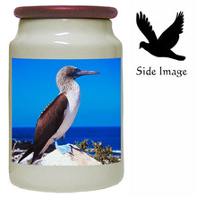 Blue Footed Booby Canister Jar