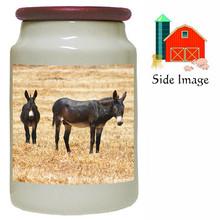 Donkey Canister Jar
