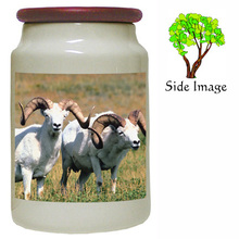 Big Horned Sheep Canister Jar