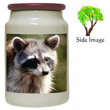 Raccoon Canister Jar