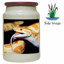 Python Snake Canister Jar