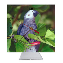 African Grey Parrot Desk Clock