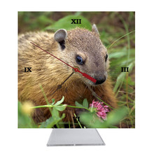 Groundhog Desk Clock