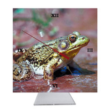 Green Frog Desk Clock