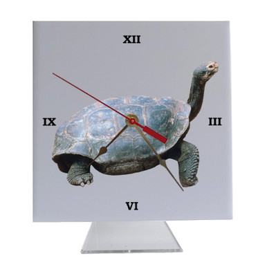 Turtle Desk Clock
