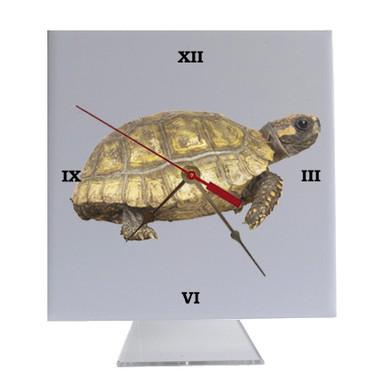 Turtle Desk Clock