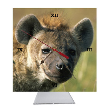 Hyena Desk Clock