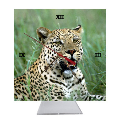 Leopard Desk Clock
