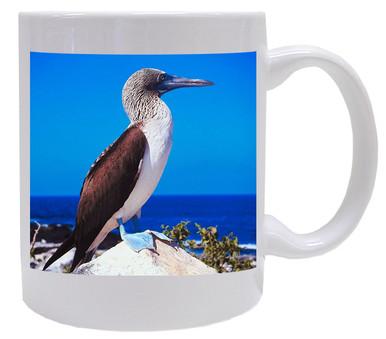 Blue Footed Booby Coffee Mug