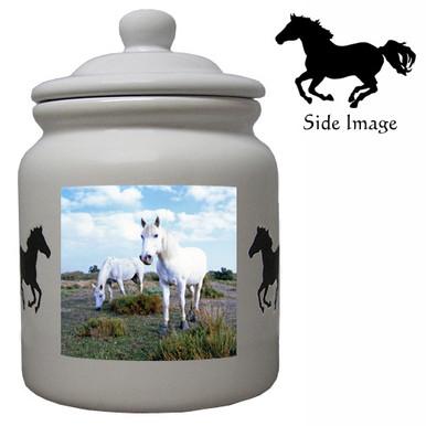 Camargue Ceramic Color Cookie Jar