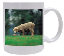 Sheep Coffee Mug