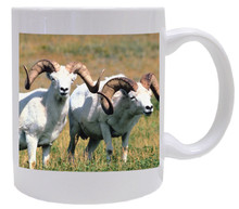 Big Horned Sheep Coffee Mug
