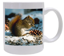 Squirrel Coffee Mug