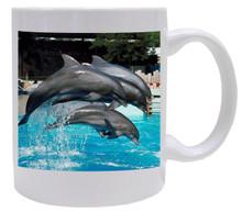 Dolphin Coffee Mug