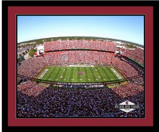 stadiumart.jpg