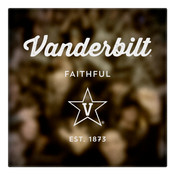 Vanderbilt Faithful Wall Art Art