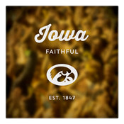 Iowa Faithful Wall Art Art