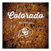 Colorado Faithful Wall Art Art