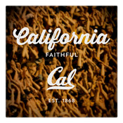 Cal Faithful Wall Art Art