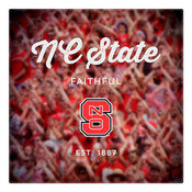 NC State Faithful Wall Art Art