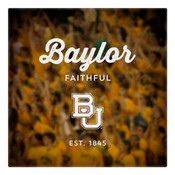 Baylor Faithful Wall Art Art