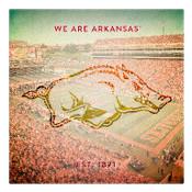 We are Arkansas  Wall Art