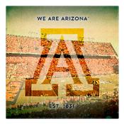 We are Arizona Wall Art
